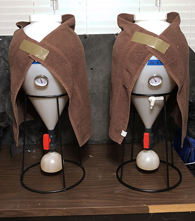 Two white tear-drop shaped fermenting jars with temperature gauges sit on a table, each wrapped with a brown hand towel taped together at the top in a clasp-like manner and looking like a couple of Jedi capes.