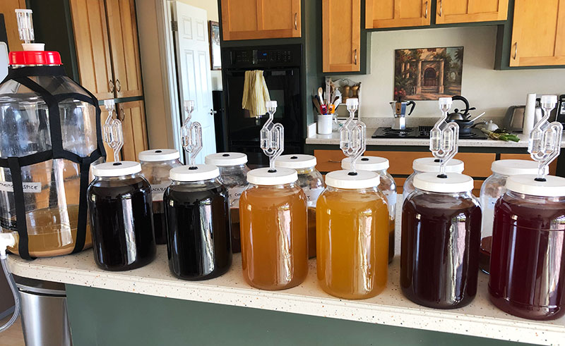 Bob Wilkie's kitchen counter crammed with 12 fermenting jars full of various colors of mead, depending on the type of fruit and/or spices added. Each is shown with a specialized airlock device protruding from the top of the jar. Also shown is a large container reminiscent of a five gallon water jug, used to brew the mead used in the jars shown, also shown with an airlock device protruding from the top..